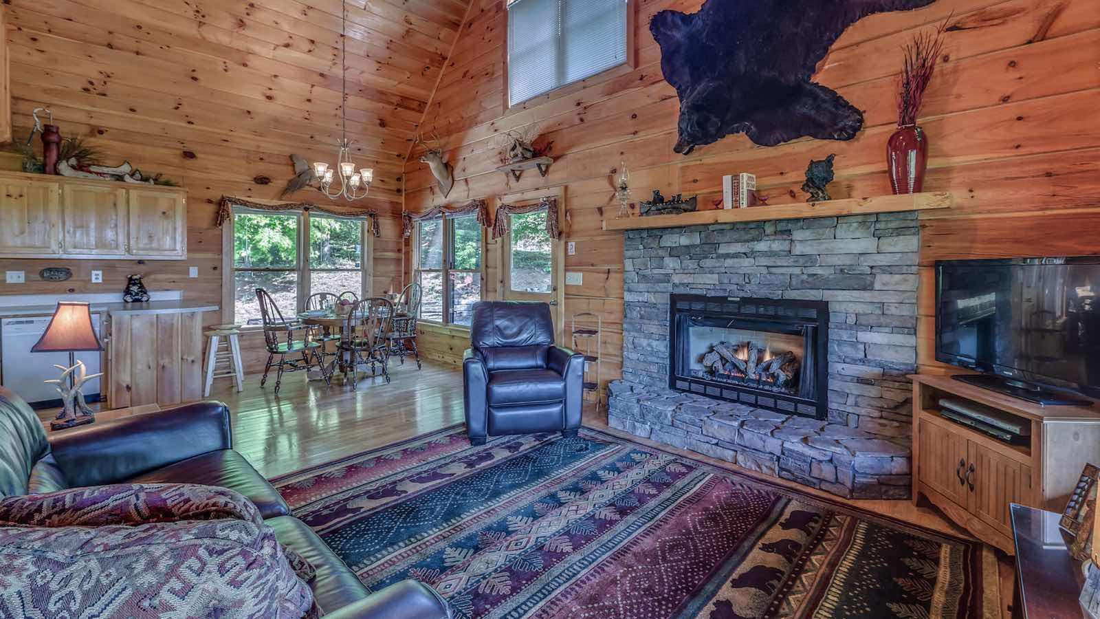 a view to remember rental cabin blue ridge ga